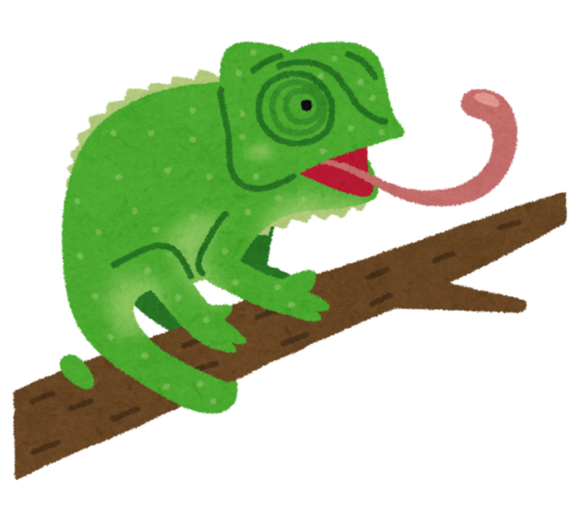 animal_chameleon.png