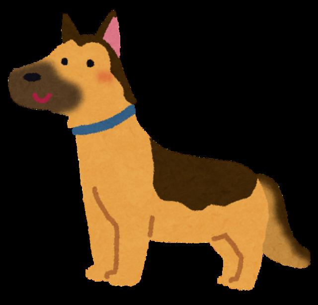 dog_german_shepherd.png