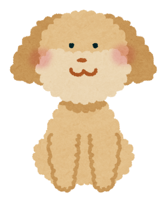 toypoodle_cream.png