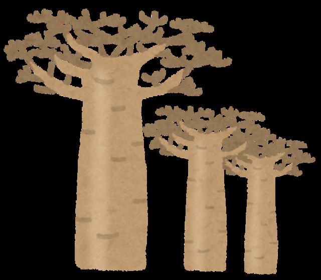 baobab_tree.png