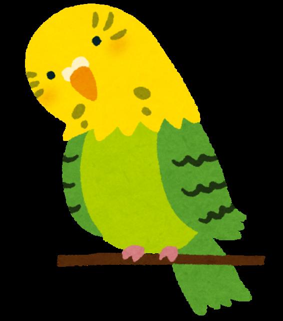 bird_inko_yellow_kubi.png