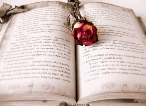 book-419589__340.jpg