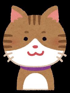 cat1_smile.png