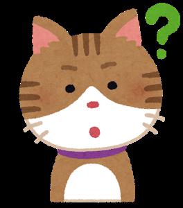 cat3_1_question.png