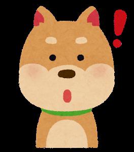 dog2_1_idea.png