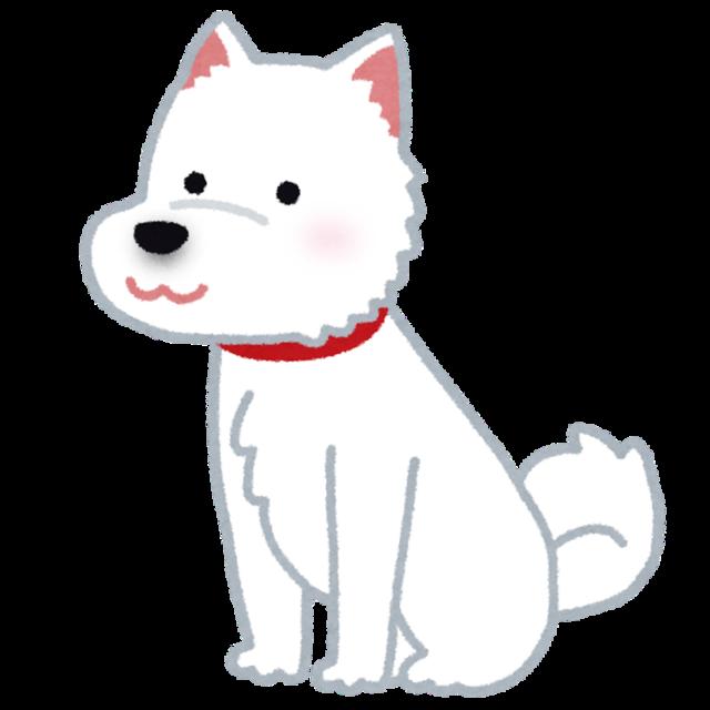 dog_hokkaidouken.png
