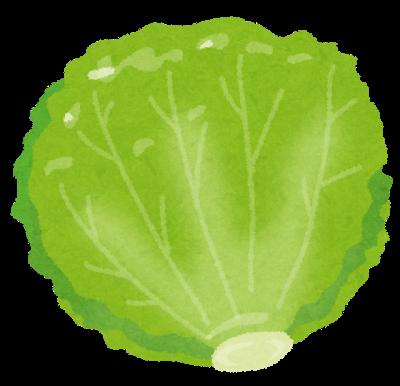 food_lettuce.png