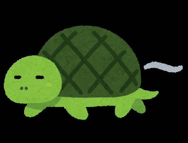 kame_slow_turtle.png