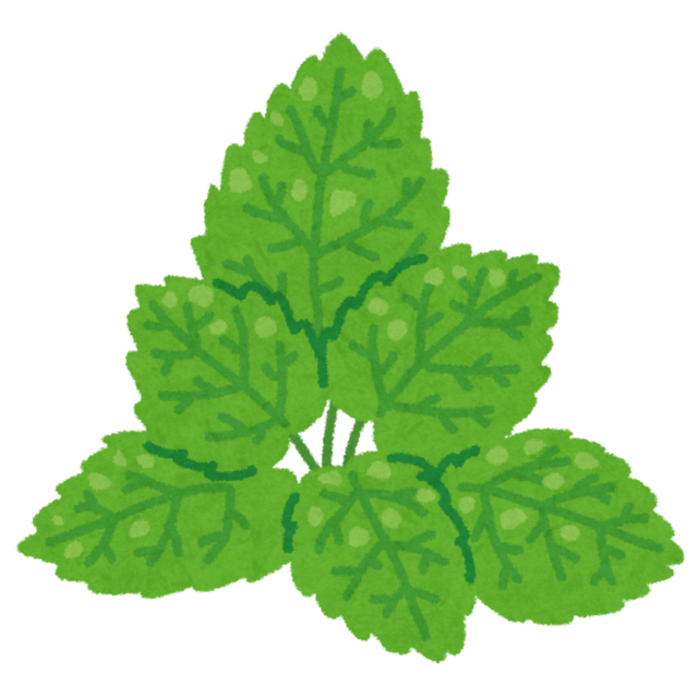 leaf_mint.png