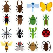 thumbnail_bug_mark.jpg